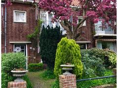 Rental Property in Leidschendam - Prinses Beatrixlaan