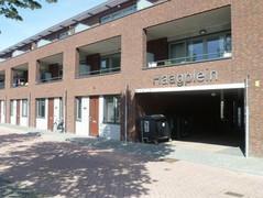 Rental Property in Breda - Pelmolenhof