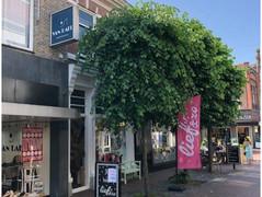 Rental Property in Almelo - Grotestraat