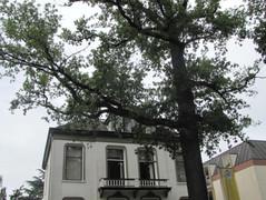 Rental Property in Apeldoorn - Paslaan