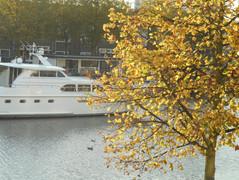 Huurwoning in Haarlem - Zuider Buiten Spaarne