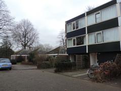 Rental Property in Apeldoorn - Dovenetel