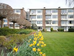 Rental Property in Leidschendam - Prins Hendrikplein