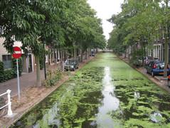 Huurwoning in Delft - Rietveld